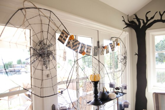 """""""trick or treat"""" spider webs, spiders"""