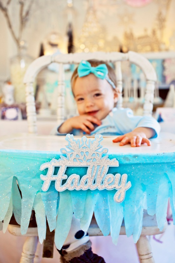 Winter Onederland Frozen Birthday